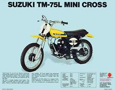 1974 SUZUKI TM-75L MINI CROSS SALES SPECS AD/ BROCHURE