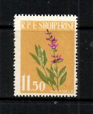 (Ref-8151) Albania 1962 Medicinal Plants 11.50 Value (Sage) SG702 Mint (MNH)