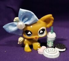 Authentic Littlest Pet Shop #731 Brown Tan Cream Chihuahua Blue Clover Eyes LPS