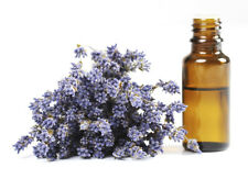 100% Pure French LAVENDER Essential Oil 50ml