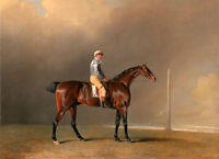 Fine oil painting young horseman with nice red horse before storm Hand painted