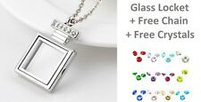 30mm SILVER BOTTLE GLASS LIVING LOCKET + FREE CHAIN & CRYSTALS Perfume style