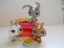 LITTLEST PET SHOP BUNNY RABBIT LOT 14 GREY 215 WHITE 220 BROWN WITH ACCESSORIES
