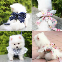 Cute Small Pet Dog Harness Leash Bow Lace Rose Dots Puppy Cat Vest Pet Costumes