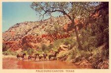Continental-size on horseback in PALO DURO CANYON, near Amarillo & Canyon, TEXAS