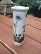 Botanic Garden Portmeirion Pottery Vases