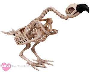 "19"" VULTURE SKELETON DECORATION HALLOWEEN DEAD ANIMAL BIRD CORPSE HORROR PROP"