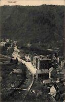 Tharandt Sachsen Osterzgebirge AK ~1910 Gesamtansicht Strassen Häuser Partie