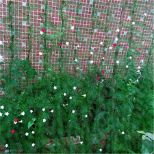 2.7*1.8m Garden Green Nylon Trellis Netting Climbing Bean Plant Nets Grow Fence`