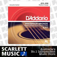 D'Addario EJ17 Phosphor Bronze Medium Acoustic Strings 13-56 Daddario EJ-17