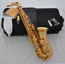 Prof. Gold Rolled hole Alto Sax High F# Abalone Key Saxophone with case