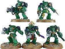 Warhammer 40k Space Marines Salamanders Terminator Squad