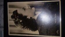 Cartolina d'epoca (POST Card) Hollywood Star Maria Denis  anni '40 nuova