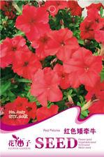 Original Package 60 Red Petunia Seeds Petunia Hybrida Vilmorin Flowers A167