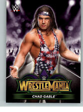 2018 WWE Road to Wrestlemania Roster #43 Chad Gable