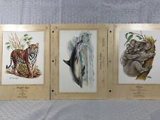 Mammals Cards 45,51, & 29. Bengal Tiger-Reiner Ziegler,Common Dolphin And Koala.