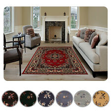 """Large Traditional 9x12 Oriental Area Rug Persien Style Carpet -Actual 9'2""""x12'5"""""""