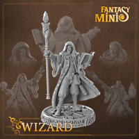Fantasy Minis - FM02 - Wizard 28mm