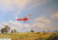 Aviation art John Young Out for a Spin DH 60 Moth Woburn Abbey Tiger Puss