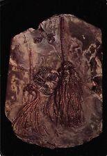 BR77124 a slab of wenlock limestone from dudley worcs uk postcard gissocrinus
