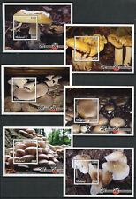Malawi 2018 MNH Mushrooms Chanterelle 6x 1v S/S Fungi Nature Stamps