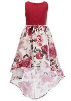 Rare Editions Big Girl/'s Rosettes Velvet Fairy-Hem Fanciful Dress-Size-10 or 14