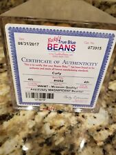 EXTREMELY RARE Ty Beanie Baby 'Curly' MWMT Retired Bear MANY Errors-Musuem Value