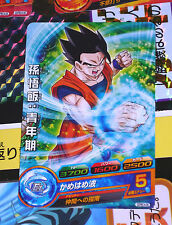 DRAGON BALL Z GT DBZ HEROES GOD MISSION PROMO CARD NOT PRISM CARTE GDPBC4-06 P