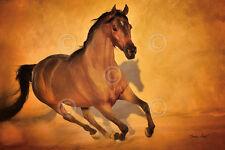 HORSE ART PRINT - Born to Run by Barry Hart Cowboy Ranch Western Poster 13x19