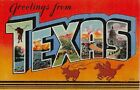 Texas TX Greetings From Large Letter Linen Postcard 16103 Longhorn