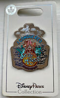 Disney Parks I Conquered Splash Mountain Pin Brer Rabbit Bear Fox New SOLD OUT