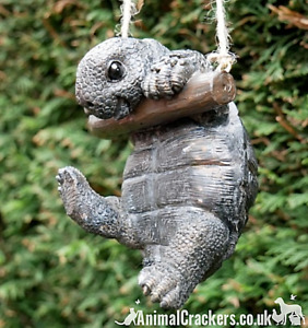 Rope hanging Tortoise tree garden ornament decoration Turtle Terrapin lover gift