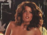 Playboy Centerfold February 1979 Playmate Lee Ann Michelle CF-ONLY