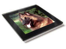 BELGIUM GERMAN SHEPHERD (TERVUREN) Dog Premium Glass Table Coaster with Gift Box