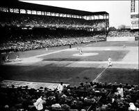 1944 Sportsman's Park Photo 8x10 - Cardinals Browns  World Series