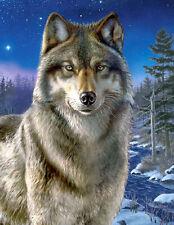 Puzzle Wolf in der Nacht, 500 Teile, Tiere, reduziert, Winter, Clementoni