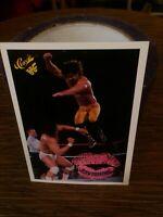 1990 Classic WWF #59 Ravishing Rick Rude