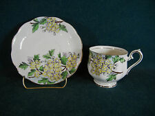 Royal Albert Flower of the Month Hawthorn No. 5 Cup and Sauer Set