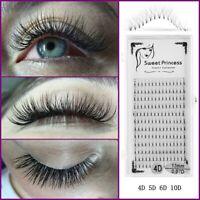 Premade Volume Fans Individual Eyelash Extension Faux Mink Hair False Eyelashes