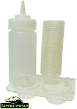 Reptile World Gecko Feeding Kit - Crested Gecko Double Ledge, Cups & Bottle