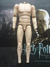 Star ace harry potter & the mortellement hallows voldemort nude body loose échelle 1/6