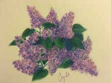 colored pencil drawing flowers lilac bush flowers