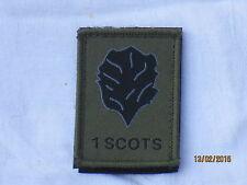 Royal Regiment of Scotland, 1 Scots, TRF, patch, MTP