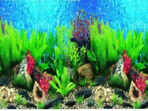 """12"""" Tall Marine Background Plastic Poster Picture Image for Aquarium / Vivarium."""