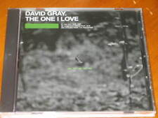 DAVID GRAY - The One I Love - 2 Track DJ REMIX PROMO CD w/ callout hook + MP3!