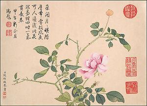 Chinese Art: Flower Paintings: Flower No. 1 by Qian Weicheng - Fine Art Print