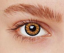 lentilles de couleur noisette  1 an - contact lenses