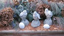 Concrete 3 Garden Chicks