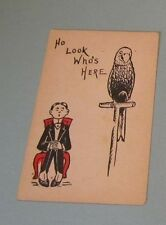 1900 Era Ho Look Who's Here Parrot Private Mailing Comic Postcard Antique