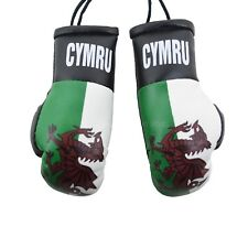 Guyana Guyanese Flag Mini Boxing Gloves Car Rearview Ornament Culture 4/""